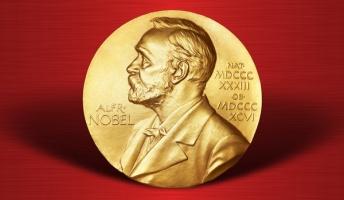 彡(゚)(゚)「えっ、ワイがノーベル賞!?」