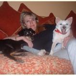 『犬の楽園をつくったカップル スリランカ編2』の画像