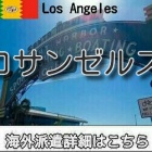 『ロサンゼルス・サンタモニカインコール求人情報』の画像