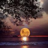 """『""""月の実態と影響力""""  - 人生のアドバイス:バシャールの言葉から』の画像"""