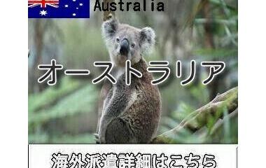 『オーストラリア出稼ぎ求人情報』の画像