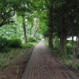 『西武拝島線沿い散策;東大和市駅~玉川上水駅』の画像