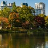 『秋の中島公園Nakajima Park in autumn.』の画像