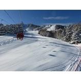 『初滑りスキーキャンプ 参加者募集』の画像