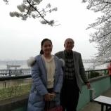 『3月26日現在、武漢ではサクラが咲いているようです』の画像