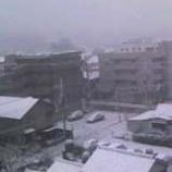 『雪やコンコン!』の画像