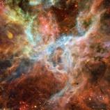 『タランチュラ星雲』の画像