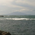ノシャップ岬にて、艮のタラバガニ!?