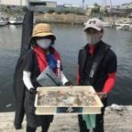 堺出島漁港 夢フィッシング お知らせ、釣果情報
