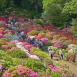 『いつか行きたい日本の名所 根津神社』の画像