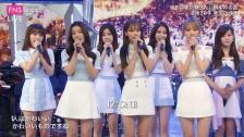 IZ*ONE、「FNSうたの夏まつり」エンディングに登場 『愛燦燦』を披露