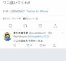 【悲報】きくちゆうきさん、Twitterで全レスを始めてしまい無事25000人のフォロワーが消滅