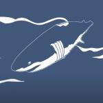 【動画】中国ではサメのヒレだけを切り取って本体は海に捨てる残虐非道な漁が行われている。