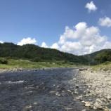 『小鮎と遊ぶ46 (2020/8/29 久しぶりの安曇川)』の画像