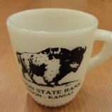 『【ファイヤーキング】BISON STATE BANK』の画像