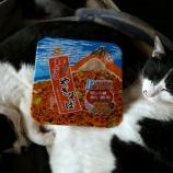 『静岡>オマケ』の画像