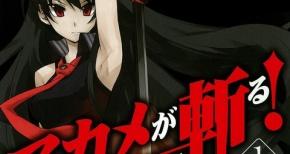 『アカメが斬る!』TVアニメ化決定!!ダークアクションファンタジー作品!!