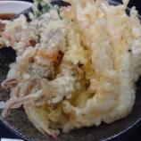 『「白海老とほたるいかの天丼」~【日本海の恵み 順風屋】神戸阪急店』の画像