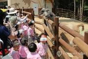 【韓国】『欠陥工事』オープン押し切った動物園で動物が脱出
