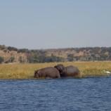 『南アフリカ旅行②』の画像