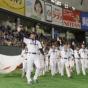 阪神タイガースから侍ジャパンに選出されそうな選出おる?
