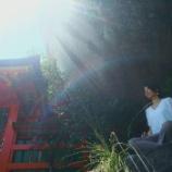 『熊野三山。神倉神社ゴトビキ岩での出会い』の画像