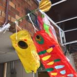 『南山幼稚園のみなさん、今年も鯉のぼりありがとうございます!』の画像