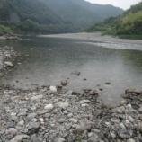 『【仁淀川友釣り日記 その5】歩く距離には比例せんぜ。』の画像