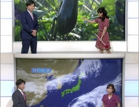【画像】NHK武田アナ、平日の岡村真美子さんと土日の寺川奈津美さんでは表情が違いすぎる件