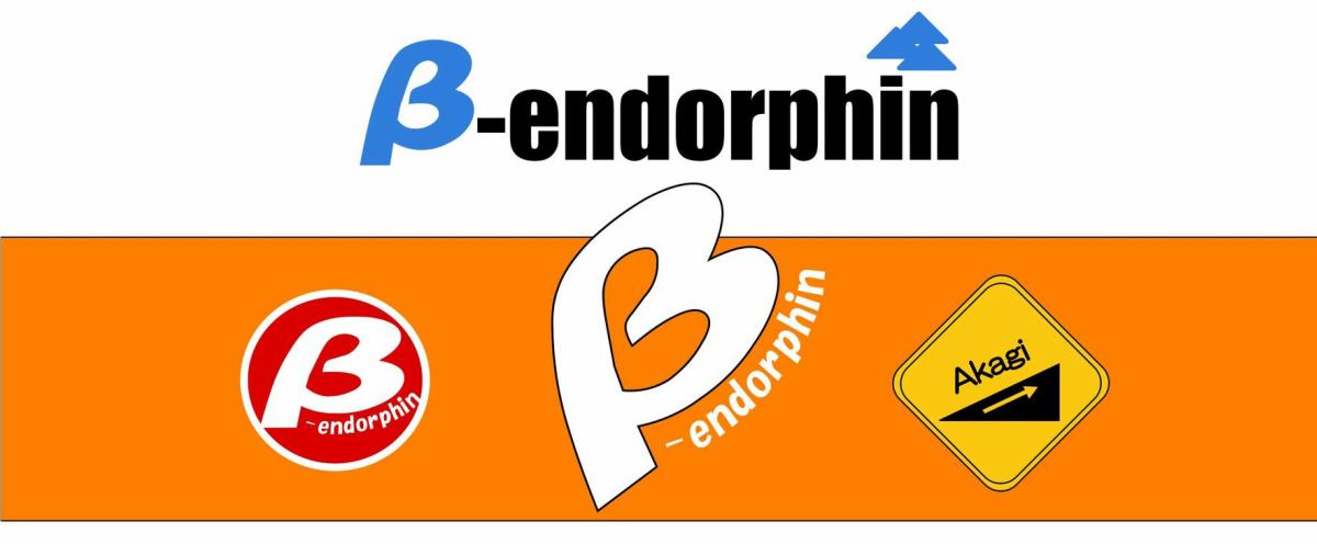 TEAM β-endorphin イメージ画像