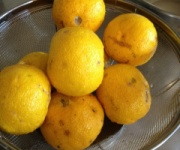 柚子でマーマレード作ったったwwwwww