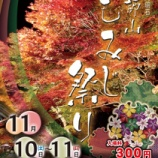 『秋といえば?』の画像