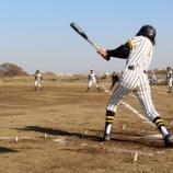 『ベスト16進出かけ熱戦展開 サンケイ少年野球大会6日目』の画像