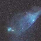 『さそり座の青い馬頭星雲(IC4592)☆彡』の画像