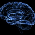 【速報】コロナ、脳を躊躇なく破壊する特性があることが新たに判明