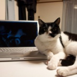 『PowerBook G4の闇』の画像
