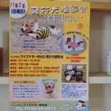 『ついに開催決定!大好評の飛行犬撮影会in射水店室内ドッグラン!!』の画像