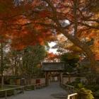 『いつか行きたい日本の名所 吉水神社』の画像