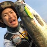 『岸壁ジギング × 大阪南港 × コアマンの夏』の画像