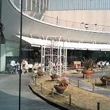 『三宮・神戸国際会館11階~【TOOTH TOOTH GARDEN RESTAURANT(トゥーストゥース・ガーデンレストラン)】でランチ』の画像