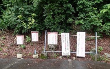 『2019/7/15_ニセ巻機山まで 湿度2000%の泥祭り』の画像