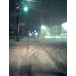 『大雪でてんてこ舞い・・・?』の画像