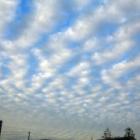 『【空】【雲】高積雲(ひつじ雲)かな?【写真あり】』の画像