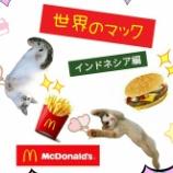 『【世界のマック】を食べてみよう!【インドネシア編】』の画像