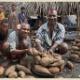 【画像】アフリカの食文化・農産物・料理について語る