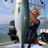 『8月15日 釣果 ジギング ブリ8キロ 自己記録おめでとう!!』の画像