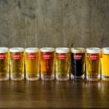 『【イベント】「ドイツビールの日」に60分1000円飲み放題!』の画像