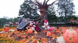 【話題】日本でハロウィンが流行らないのは何故か