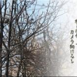 『及川語録』の画像