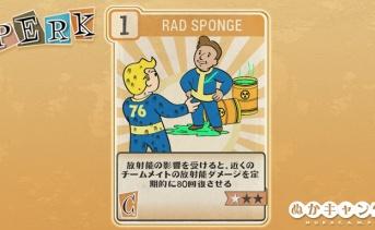 Fallout 76:Rad Sponge(Charisma)